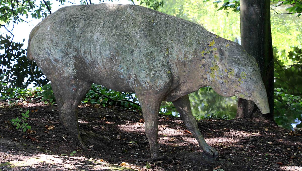 Palaeotherium fossils have been found in Europe and North America
