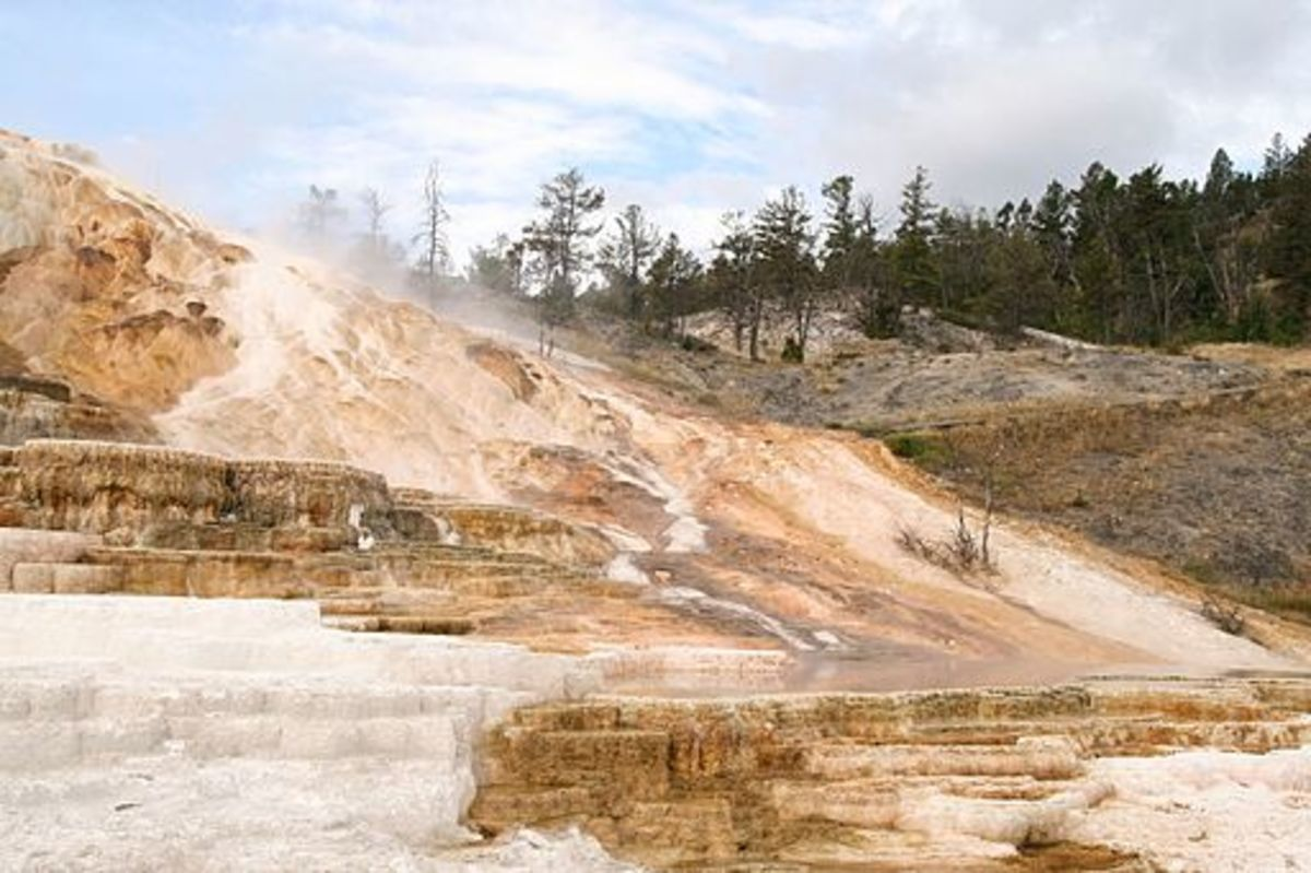 Minerva Terrace, Yellowstone