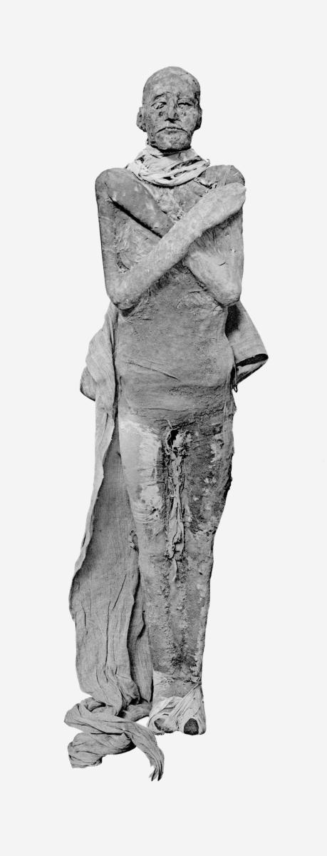 The mummy of Ramesses III