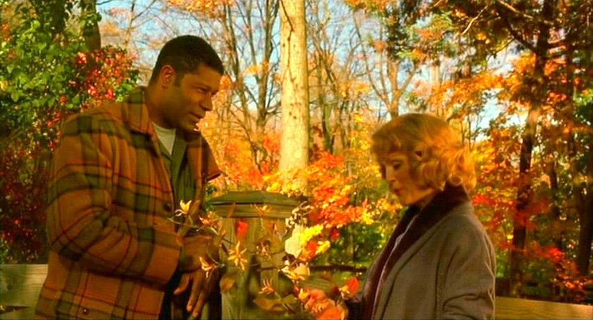 Todd Haynes's film Far From Heaven