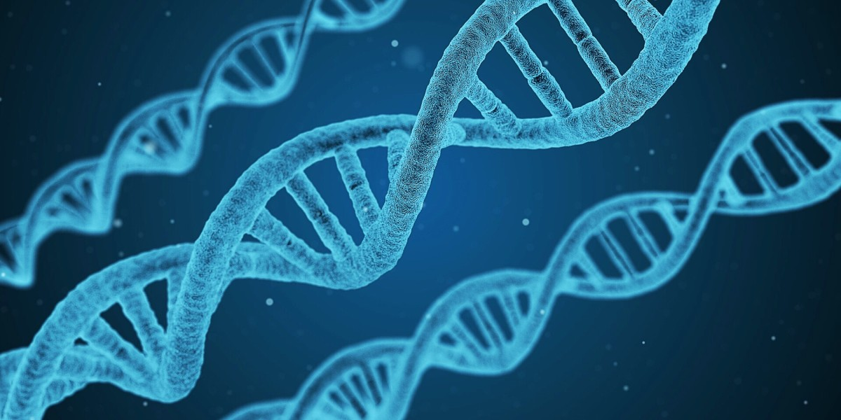 A DNA molecule exists as a double helix.