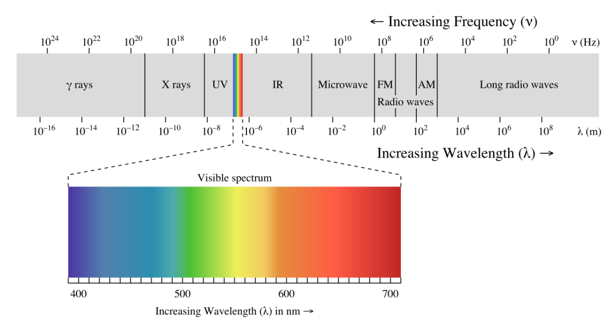 The electromagnetic (light) spectrum. Blue and purple light have much shorter wavelengths than red or orange light.