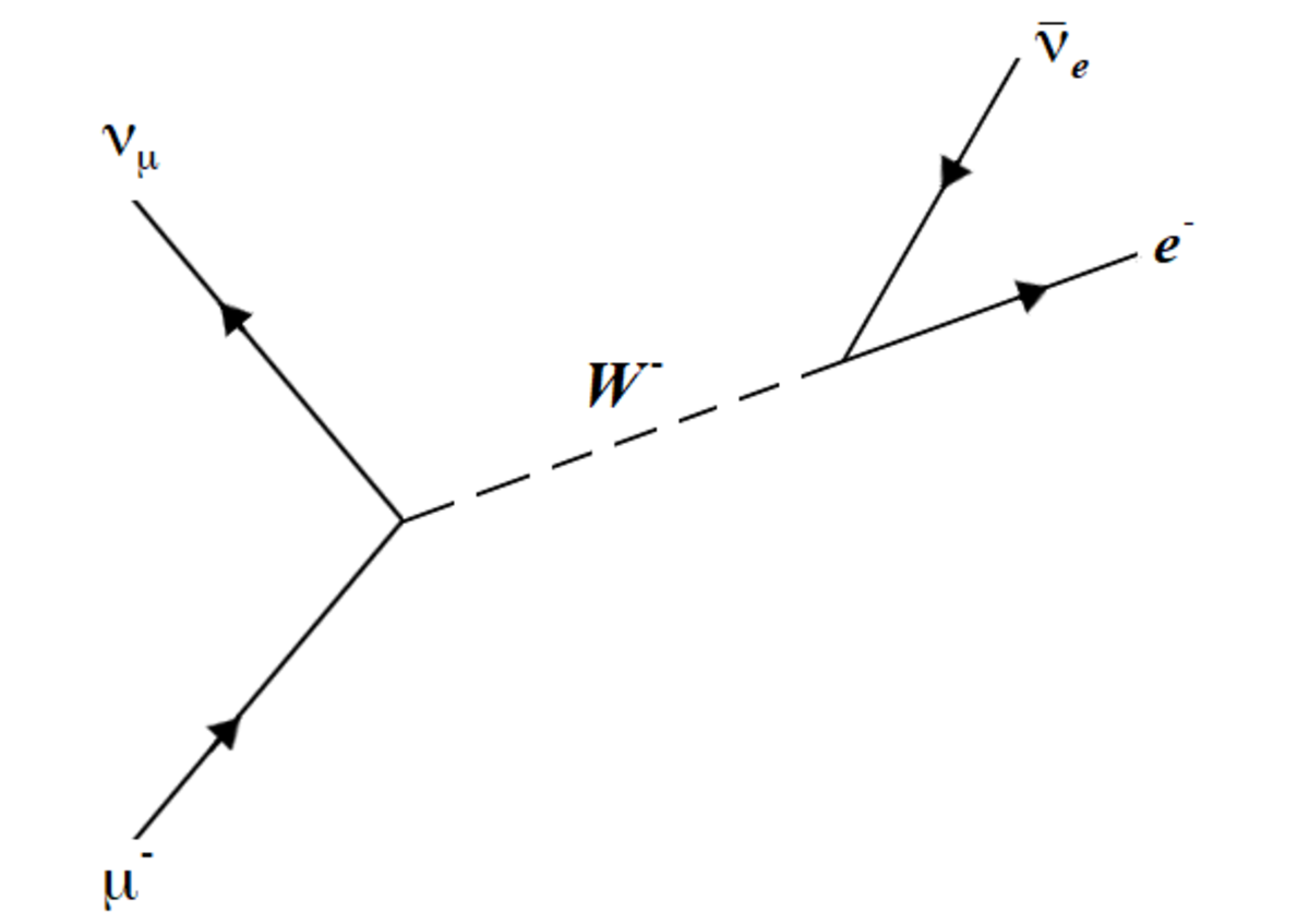The decay of a muon, also through the weak interaction. Notice the conservation of total lepton number as well as the individual electron and muon lepton numbers.
