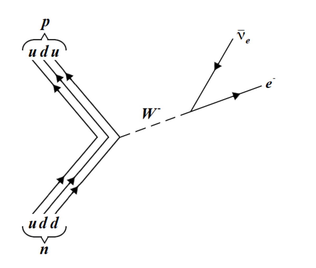 The beta decay of a neutron into a proton, through the weak interaction.
