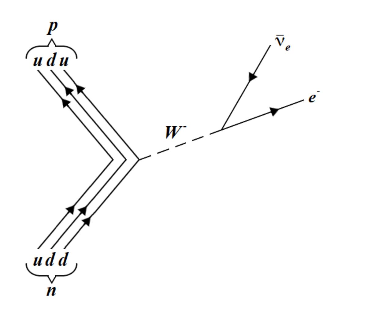 The beta decay of a neutron into a proton, through the weak interaction.