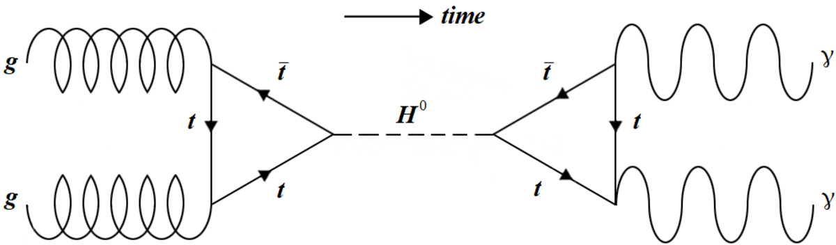 The production of a Higgs boson via gluon fusion followed by a subsequent decay into two photons. These were some of the processes observed by search at the LHC. The time axis has switched to an horizontal orientation for convenience.