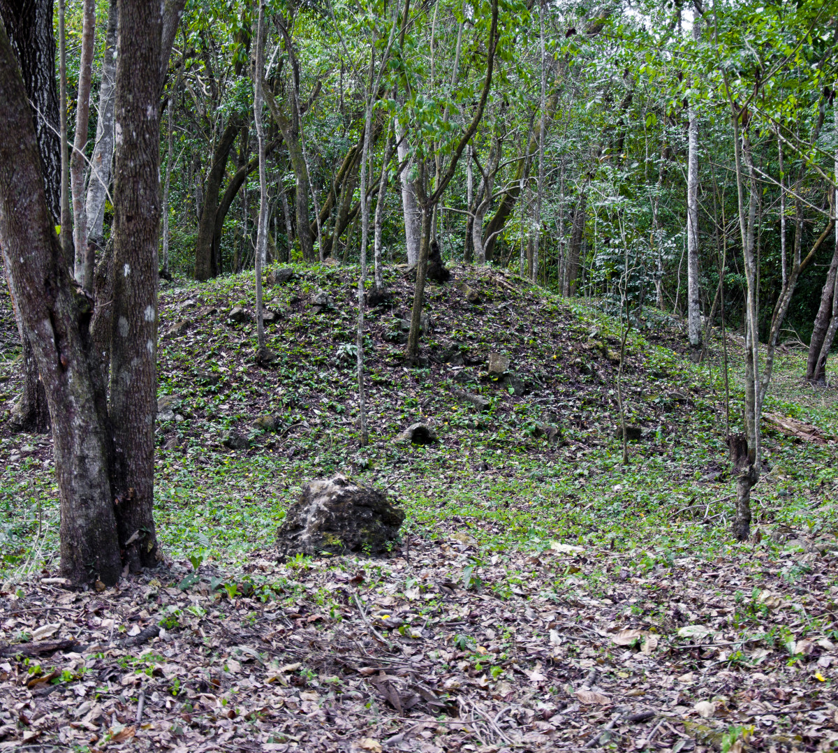 Mayan structure awaiting excavation.