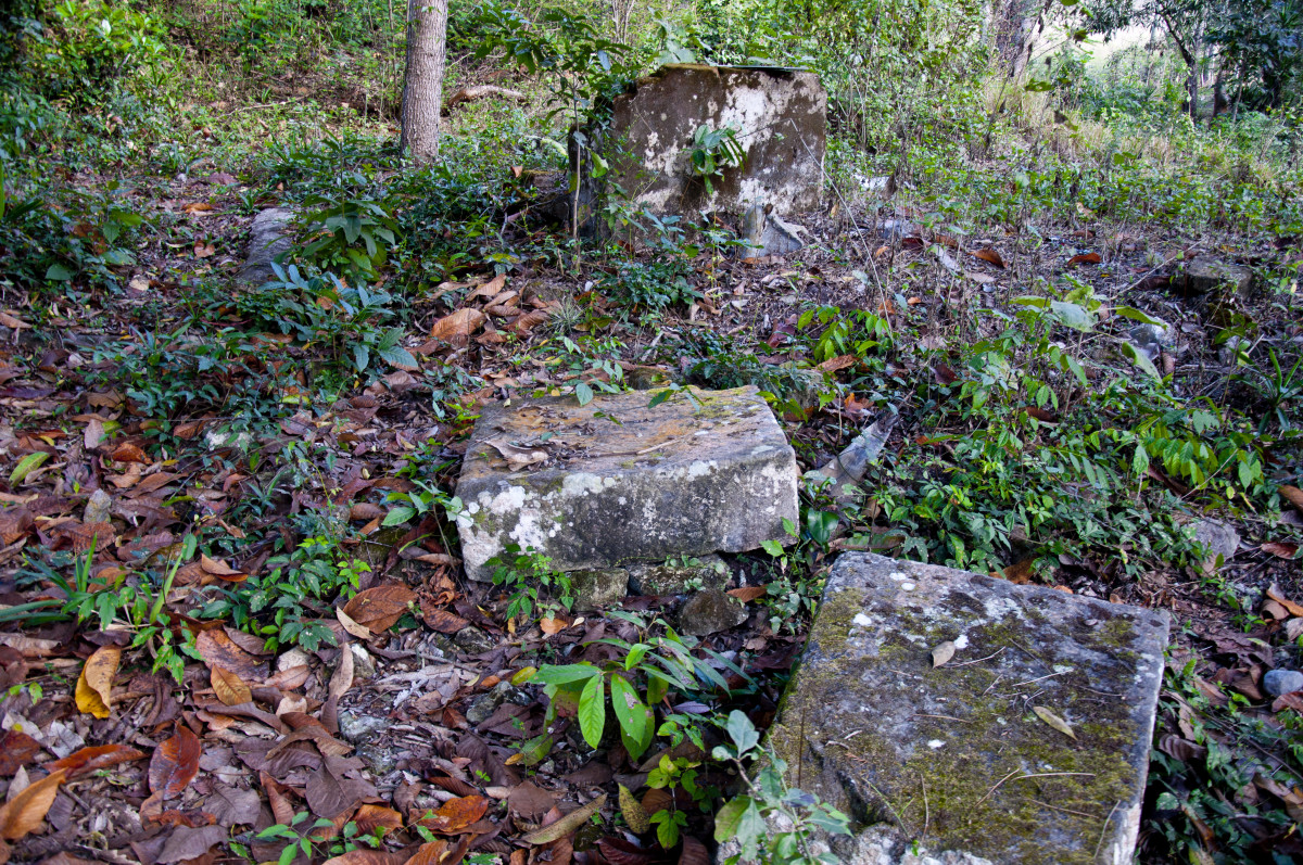 Worked stones lying in the forest.