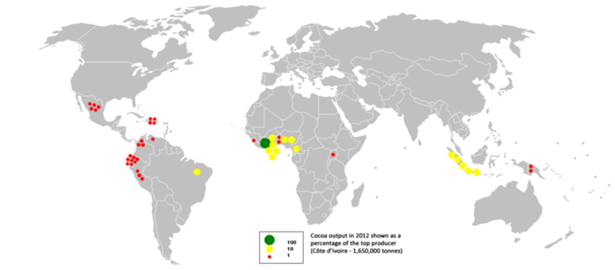 A map showing the major cacao growing areas of the world. Cacao trees flourish in warm, equatorial climates.