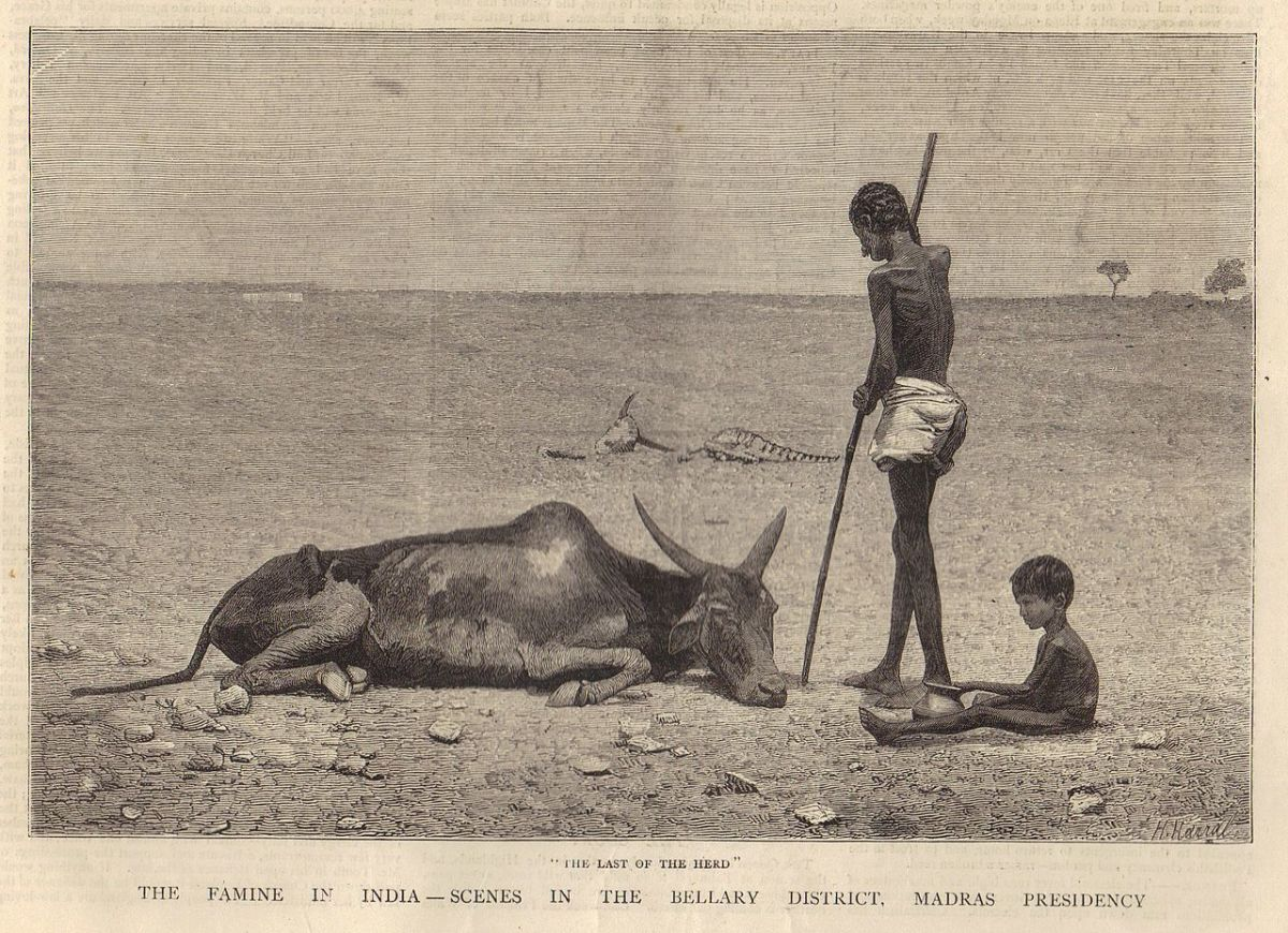 A scene from one of the famines in British India : tens of millions at the least died throughout British rule of hunger.
