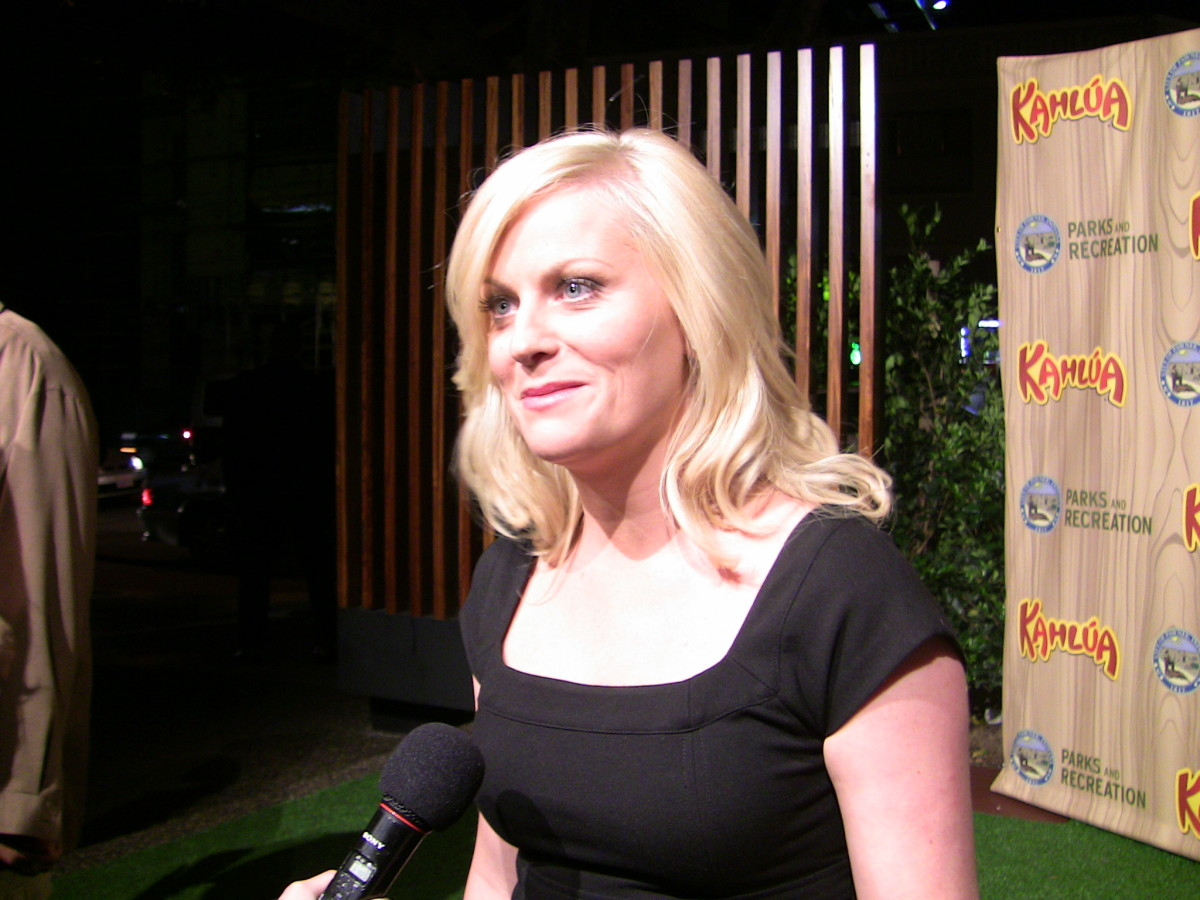 Amy Poehler, one of my personal favorite comedians, hails from Second City Comedy Club, in Chicago.