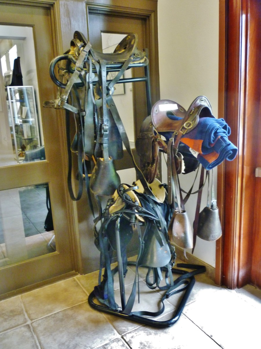 Old saddles in the Buffalo Soldiers National Museum