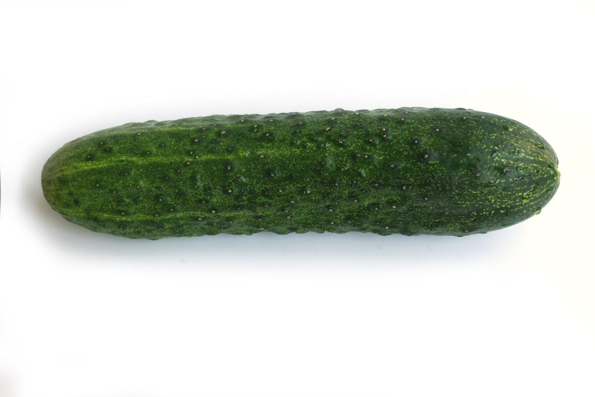 Cucumber|Kheera|खीरा