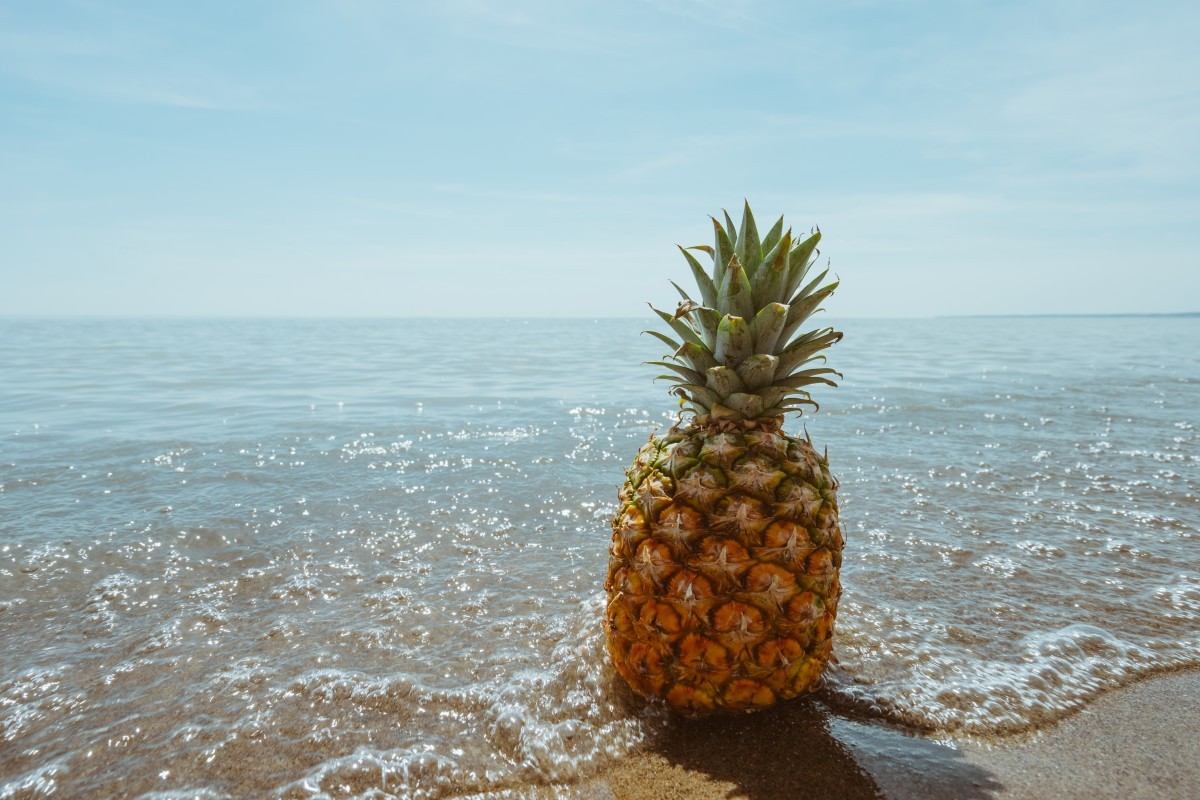Pineapple Annanas अनानास