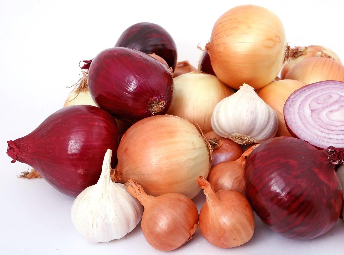 Onion|Payaaj|प्याज
