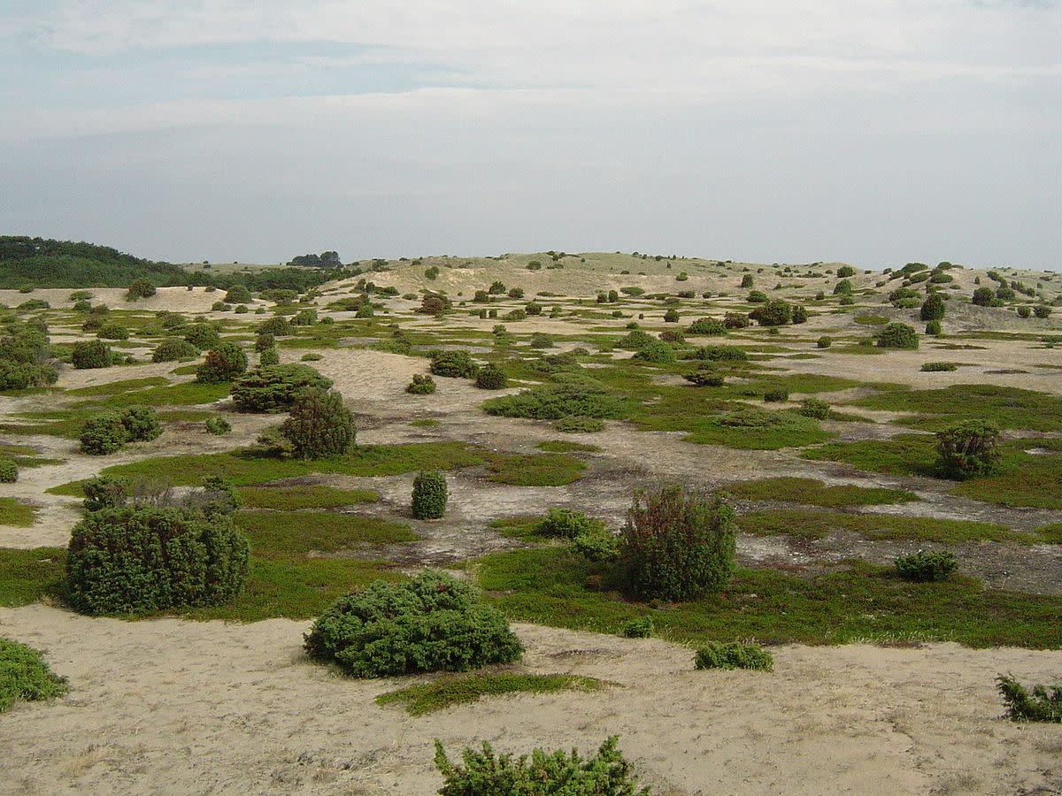 Anholt Desert.