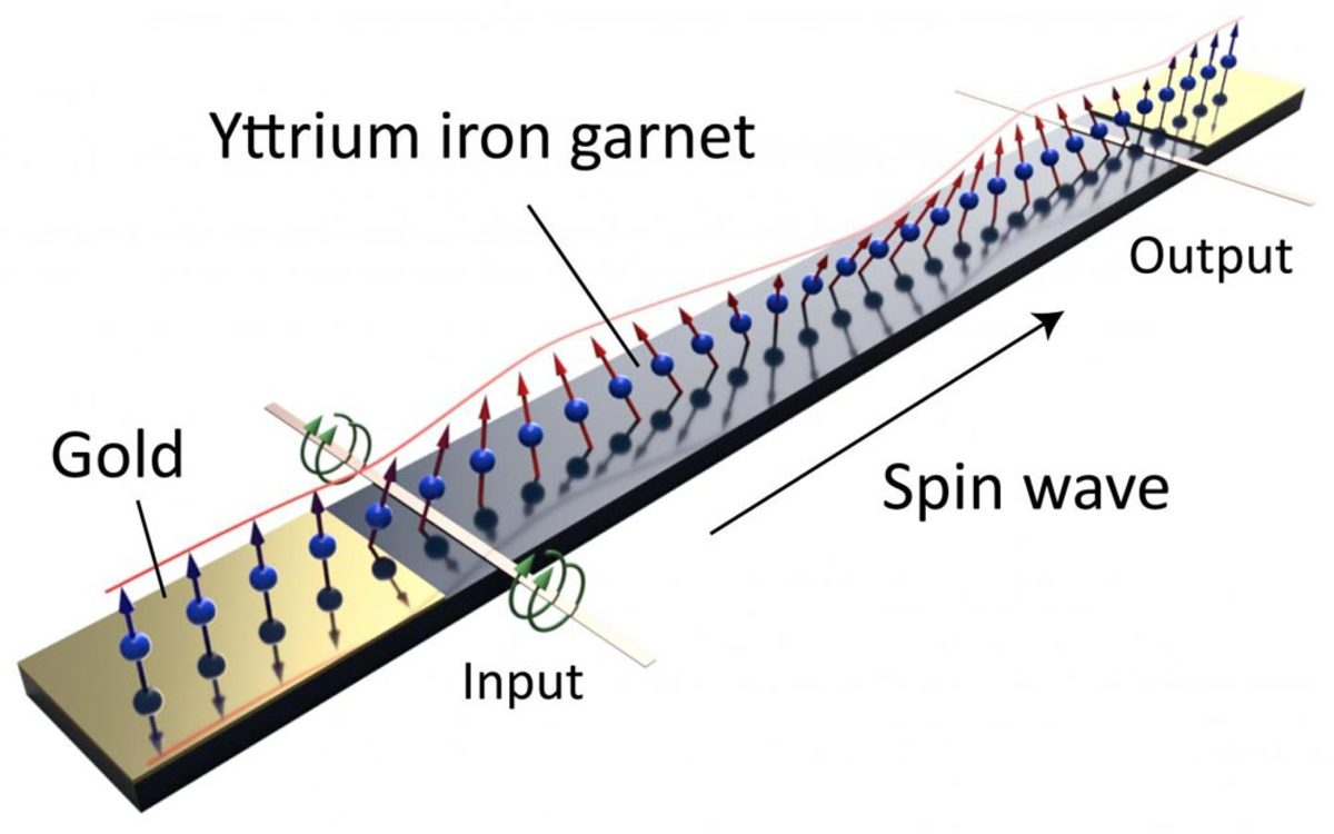 The spin wave visualized.