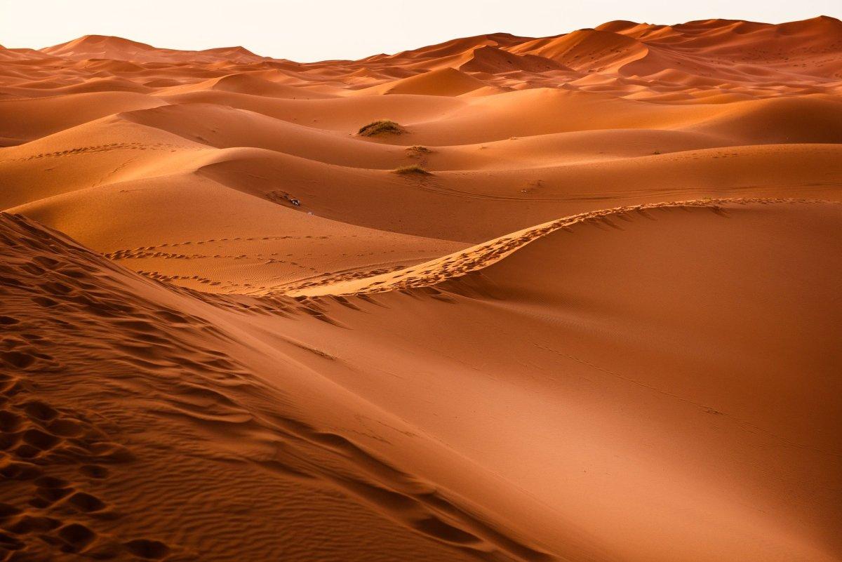 Desert|Registaan|रेगिस्तान