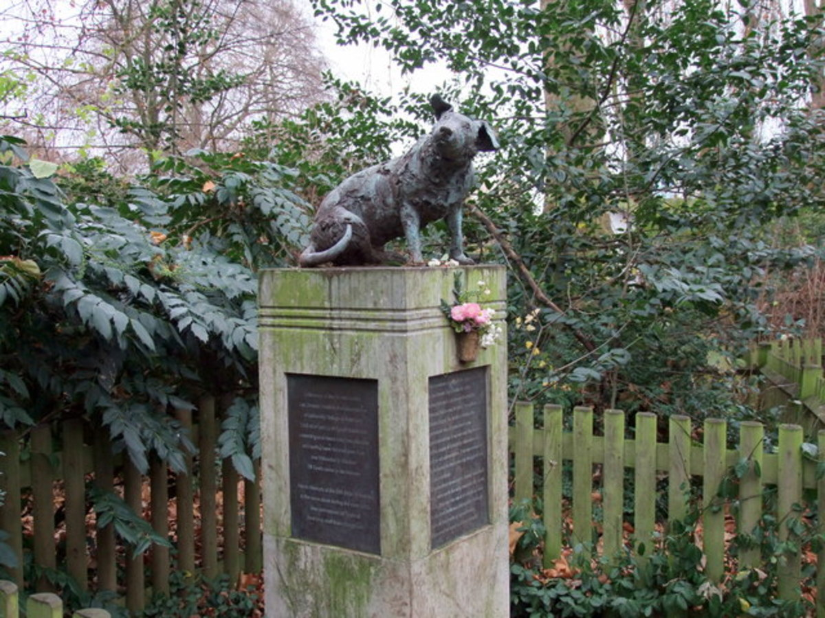 The Second Brown Dog Statue