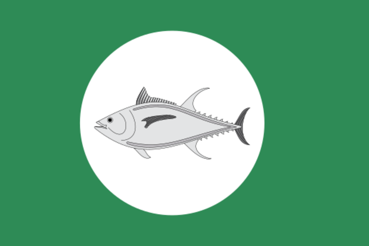 The flag of Outer Baldonia.