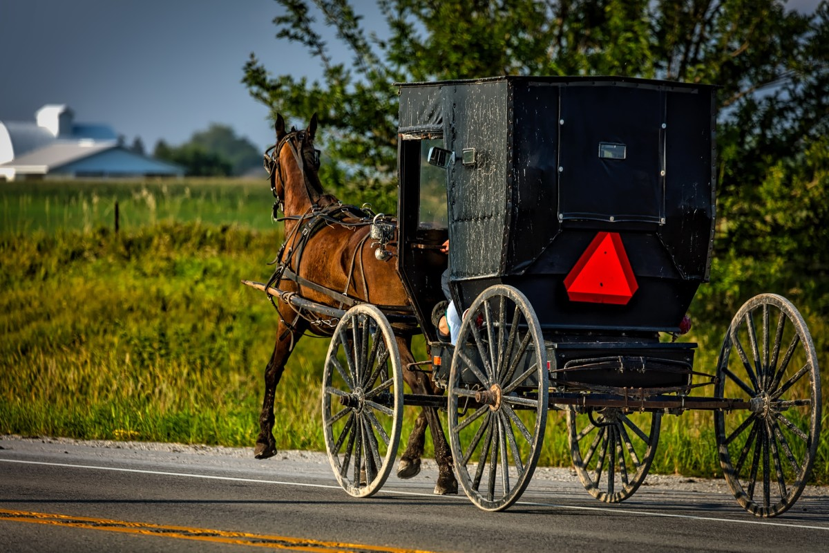 The Amish came to the U.S. to practice their religion and way of life without persecution.