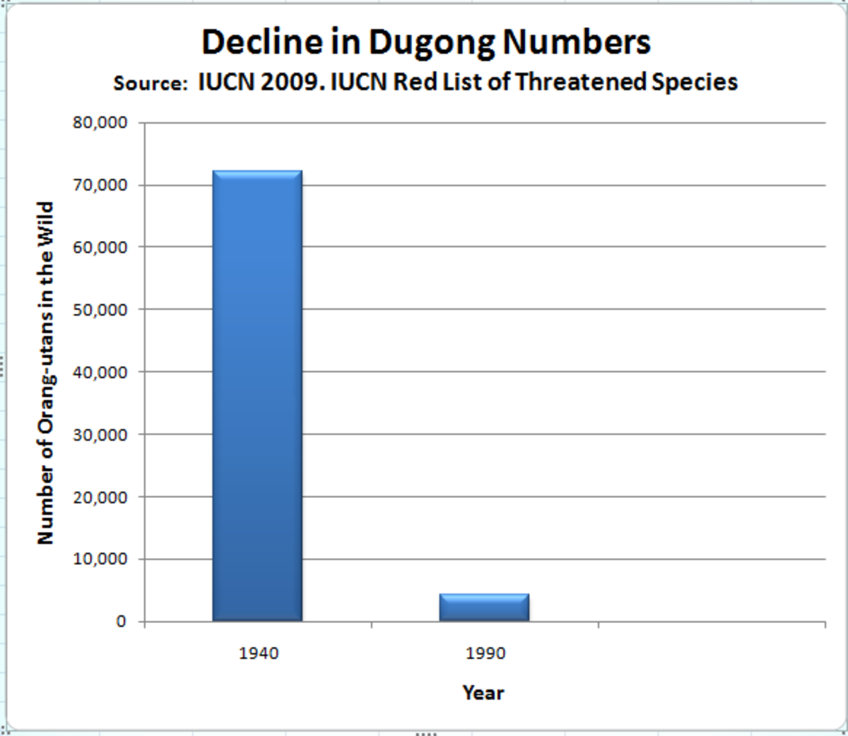 bar chart graph showing the population change of the dugong from 1940 to 1990