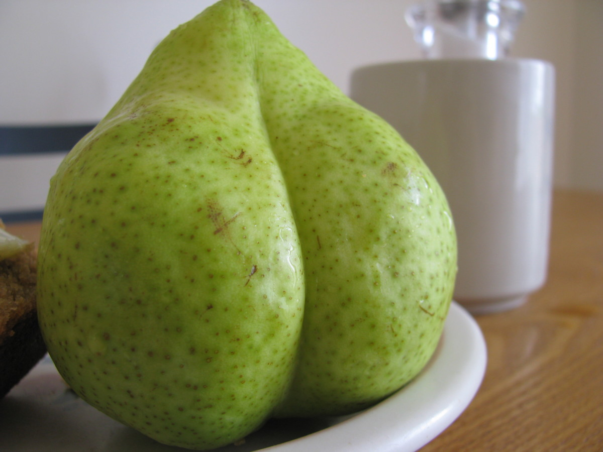 A hefty pear, shaped like a full bottom