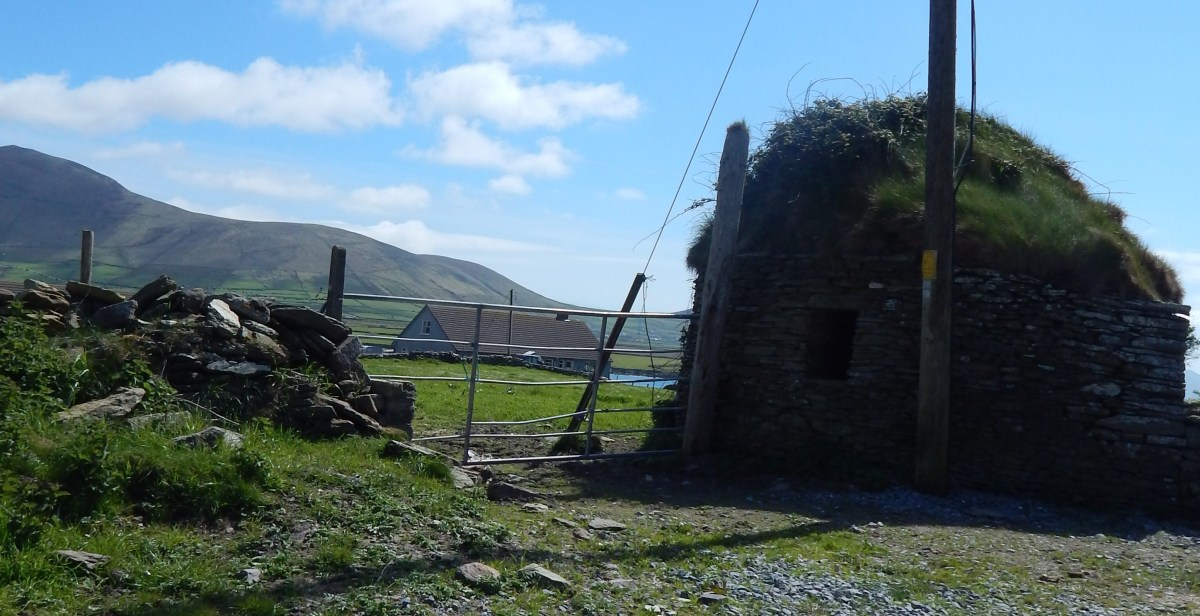 19th-20th Century corbelled stone outbuilding with turf roof, near Ferriter's Cove, Dingle Peninsula
