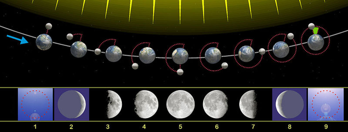 The Moon has eight phases as seen from Earth.
