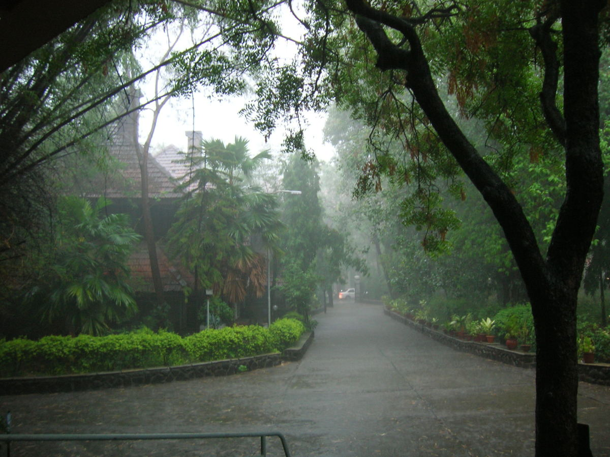 Monsoon rains are caused by Sun's position in the sky