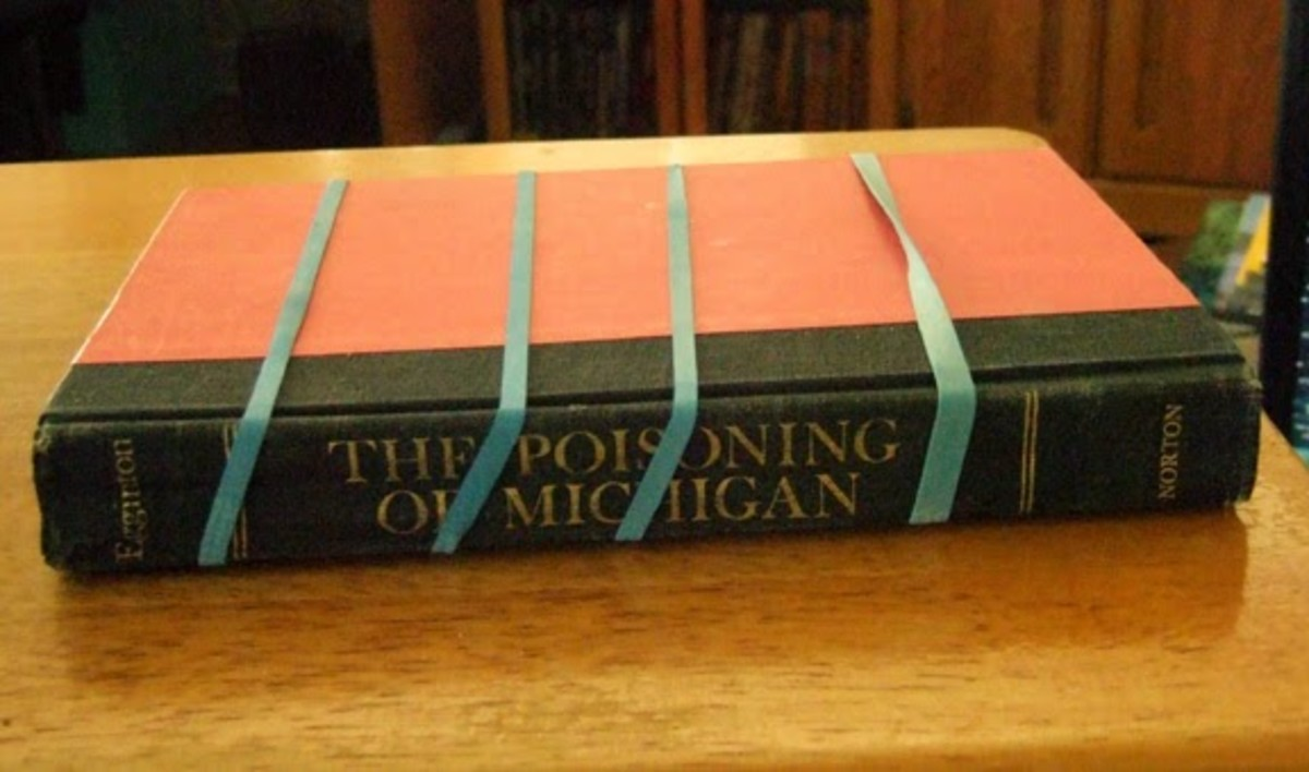 """The Poisoning of Michigan,"" a book written by Joyce Egginton"
