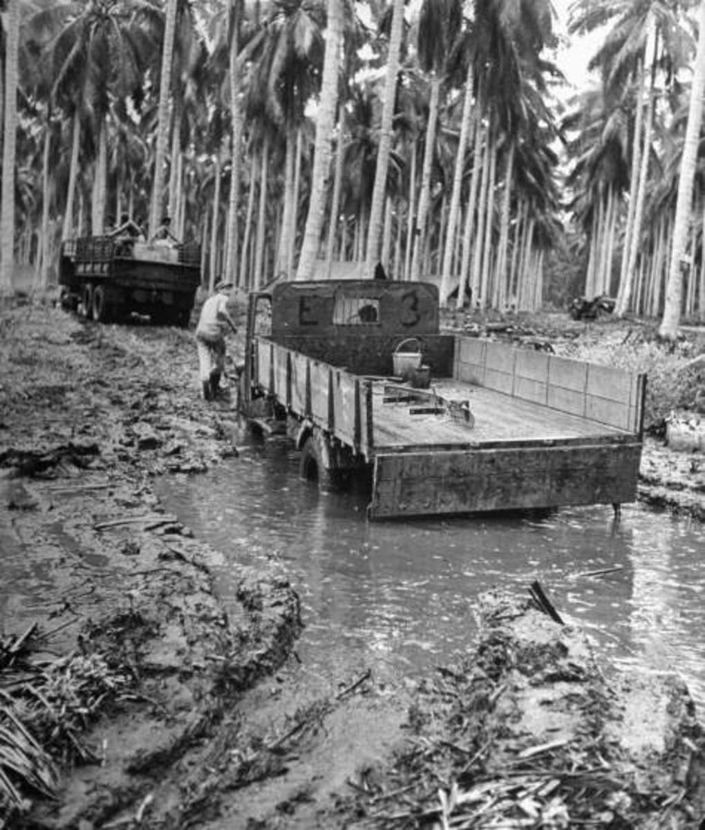The heavy rains on Guadalcanal were a breeding ground for malaria.