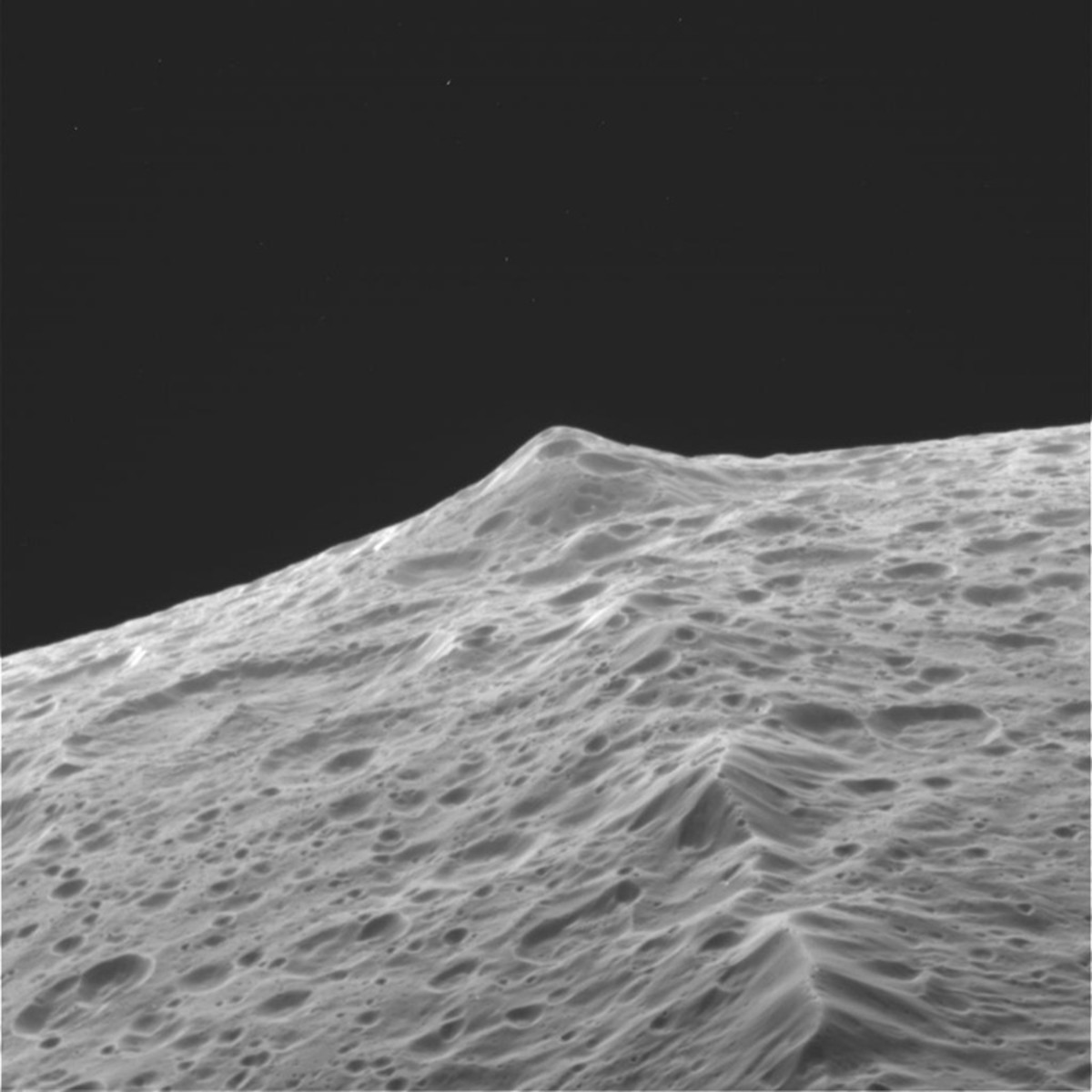 A close-up of the ridge.