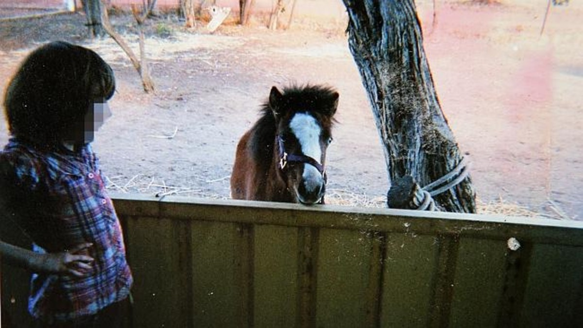 One of the children with a pet pony. The boys admitted to torturing animals.