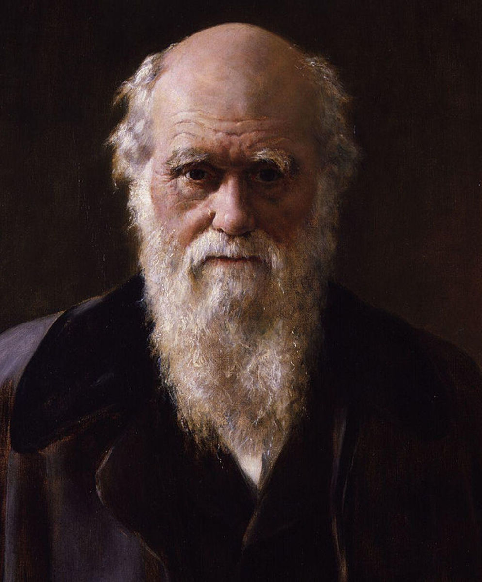 Since Darwin first explained his theory of evolution by natural selection in the nineteenth century, an overwhelming amount of evidence has been accumulated,  from palaeontology to genetics, to support it.