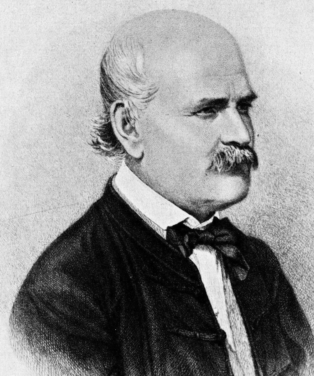 Ignaz Semmelweiss, 1860