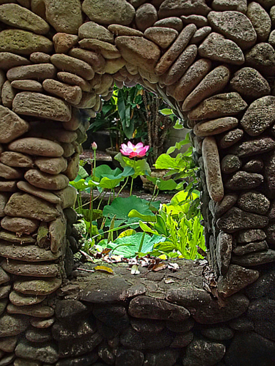 Above: A lotus pond viewed through an opening in the rock wall.