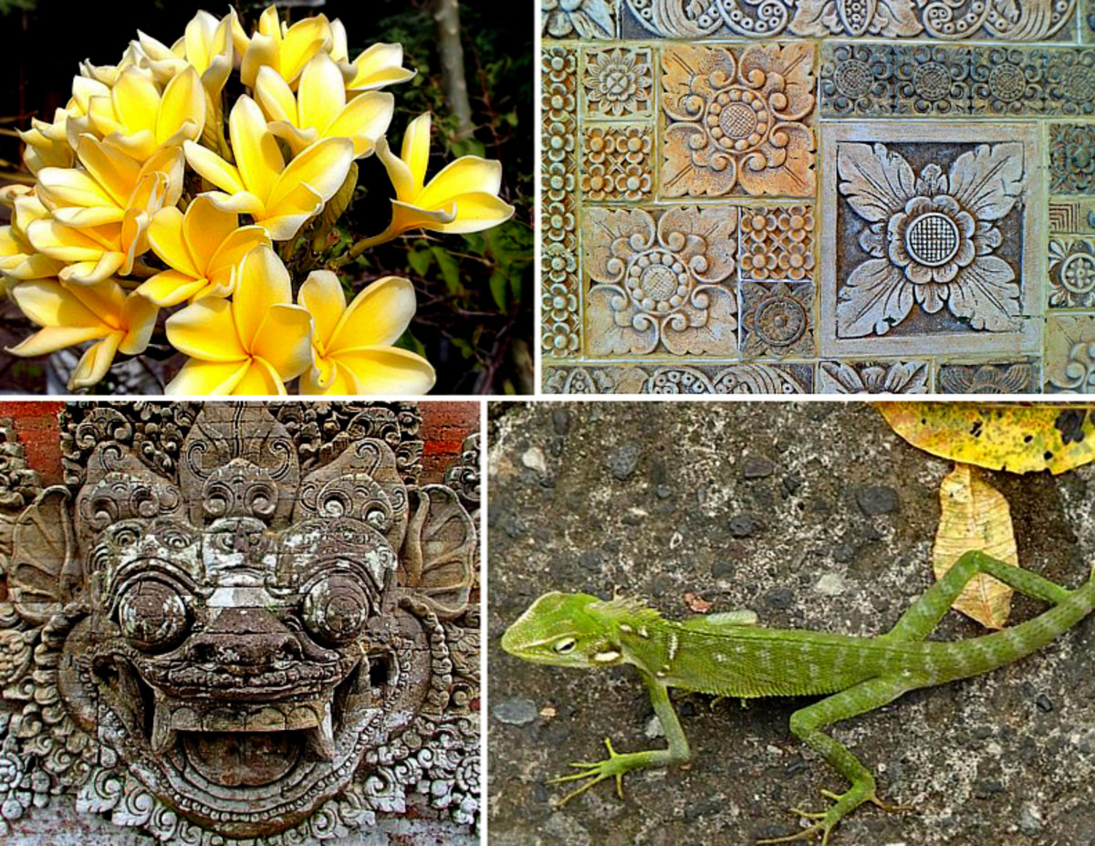 Above: Intricate carvings on a gate resemble creeping vines; flower motifs on stepping stones look like real flowers; a menacing dragon statue takes shape from a harmless lizard.