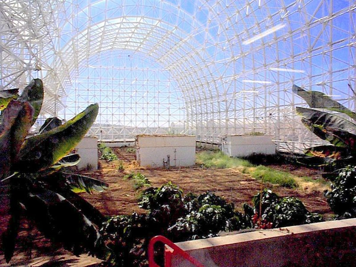 Biosphere 2 in 1998.  Photo by daderot, courtesy Wikimedia Commons.