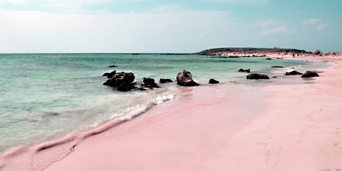 Pink Harbour Island
