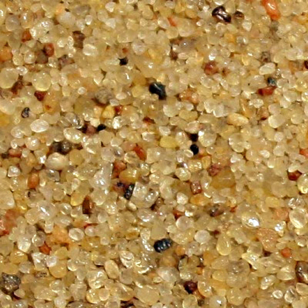 'Typical' quartz sand. Note the predominant colour of the sand, but also note the variety of other minerals in the sample