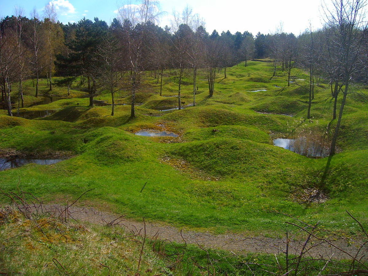 The Verdun Battlefield 100 years after the war, permanently changed by combat.