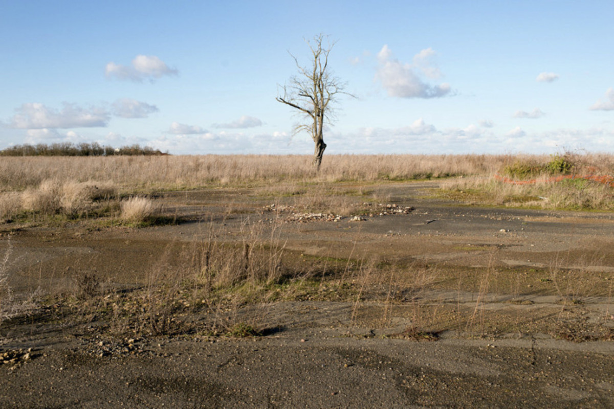 A example of the Zone Rouge where the soil is so poisonous, barely anything can grow.