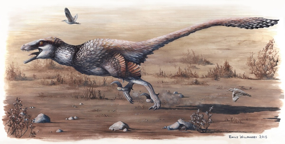 A scientific illustrator's impression of Dakotaraptor