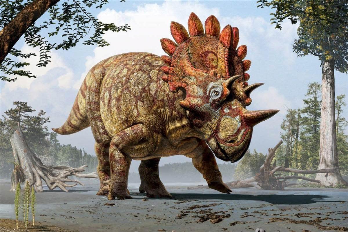 Regaliceratops, by Julius Csotonyi.