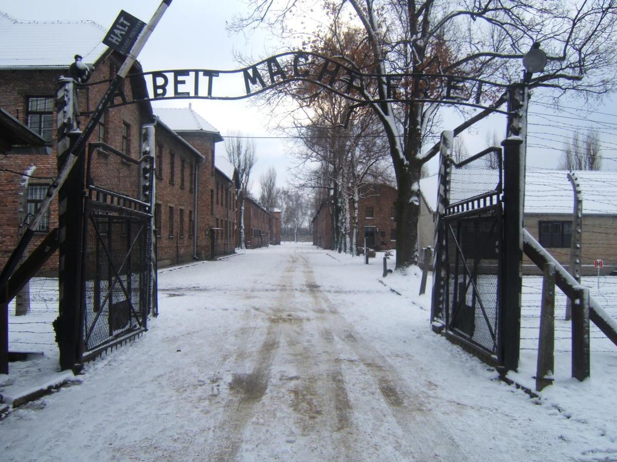 Auschwitz Society