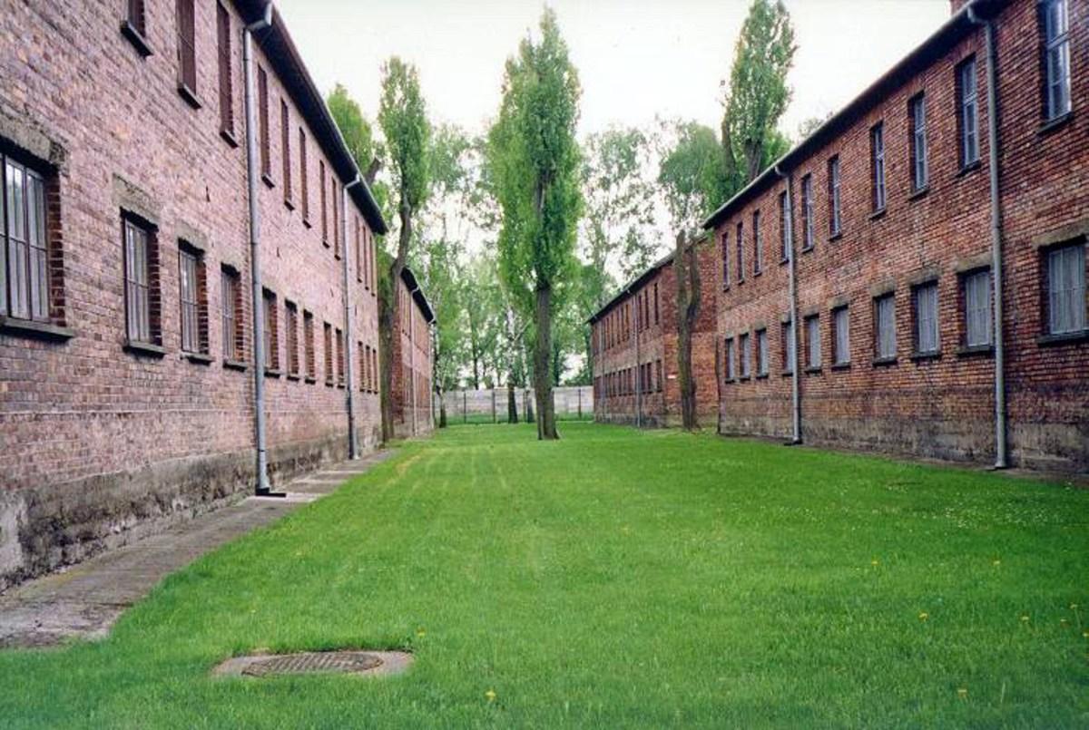 auschwitz-society