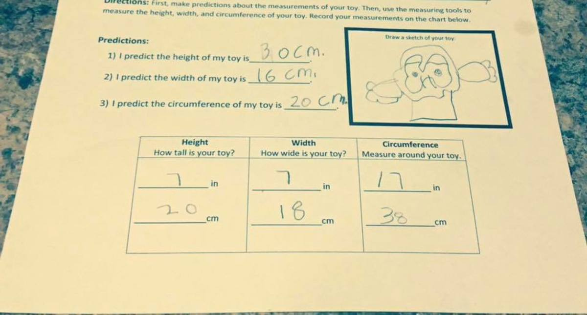 Example Record Sheet. This sheet asks for predictions, measurements, and even a fun sketch.