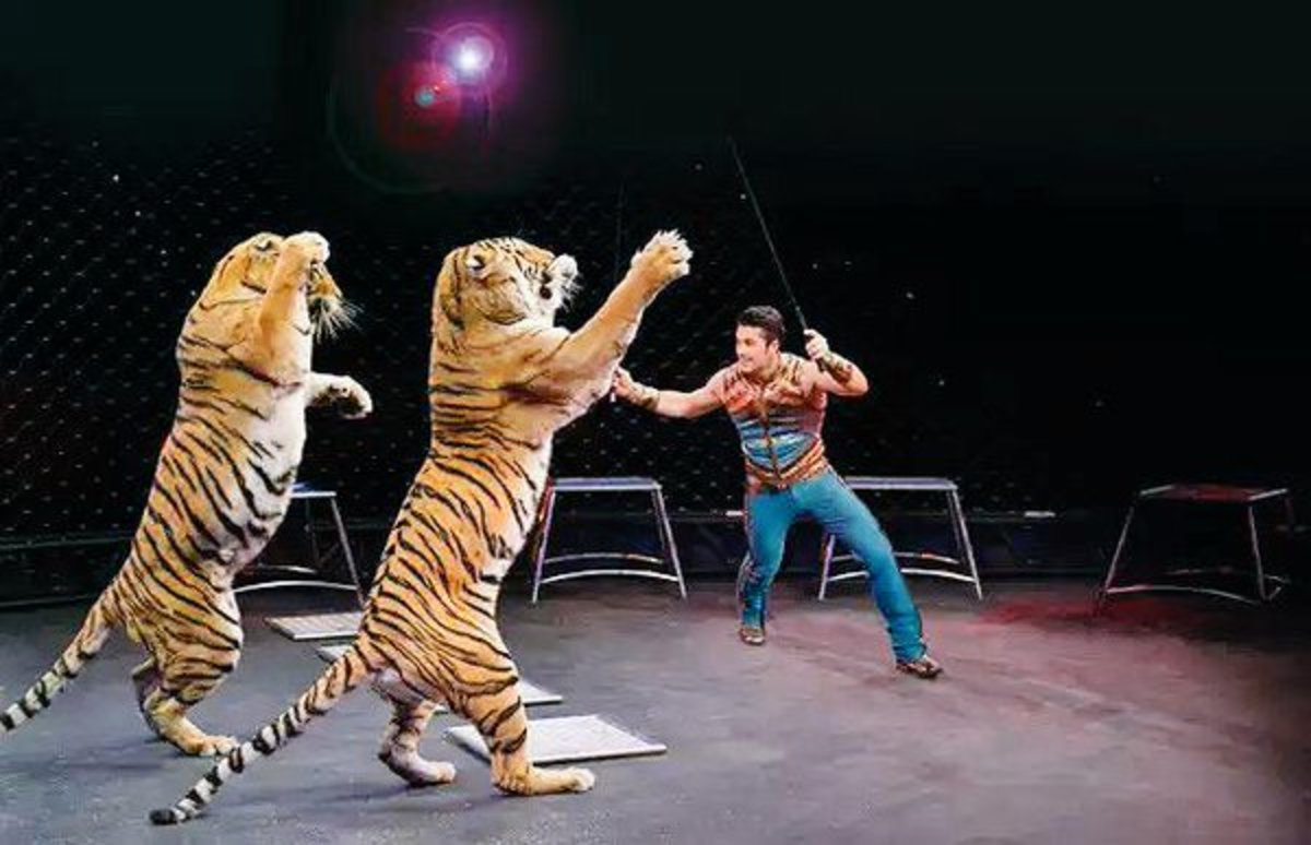 Dancing with Max and Kashmere.   Ringling Bros. and Barnum & Bailey presents Legends (2014-2016)