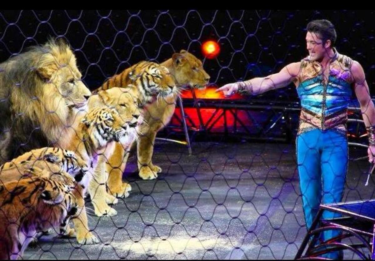 Alexander Lacey plays with his big cats during this performance.  Ringling Bros. and Barnum & Bailey presents Legends (2014-2016)